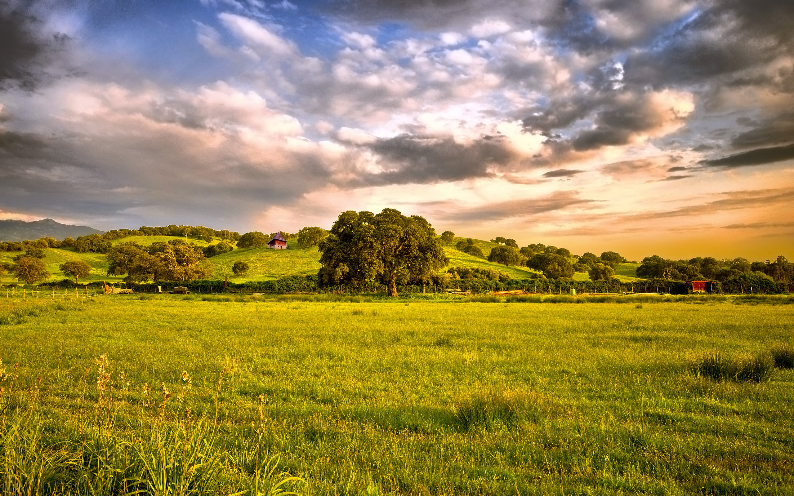 countryside-background-1